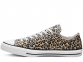 All Star Leopard Low Top 0