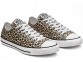 All Star Leopard Low Top 1