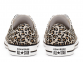All Star Leopard Low Top 3